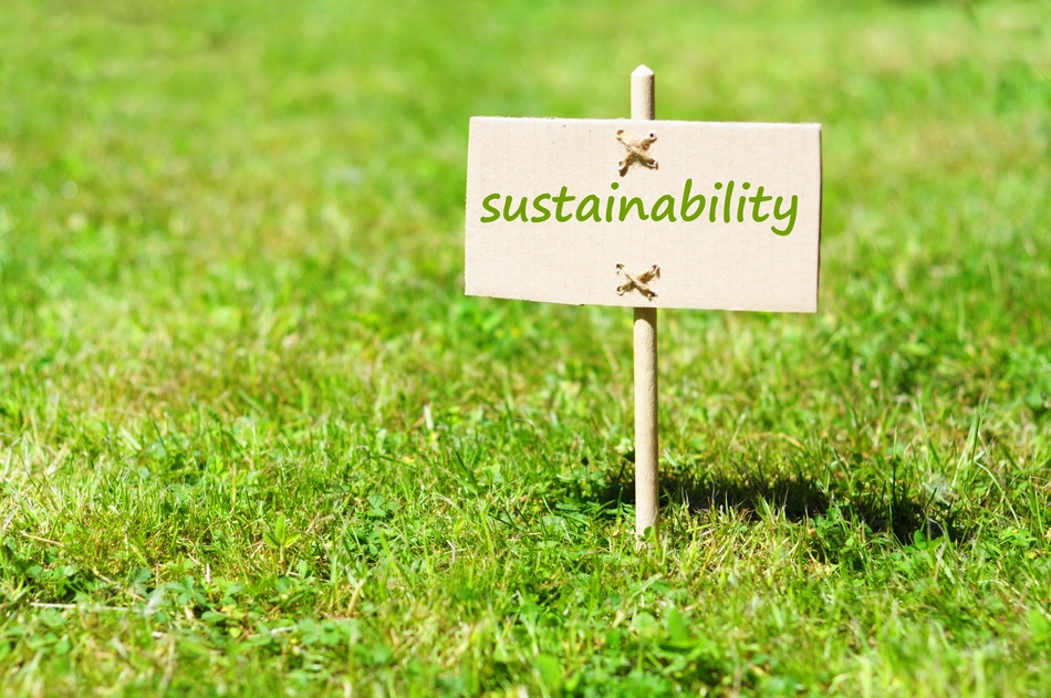 Means to be Sustainable About us