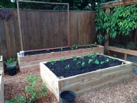 Food Growing, Organic Land Care, Home Construction, & Custom Landscapes
